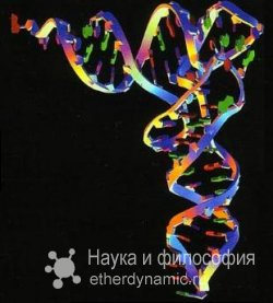 Русские ученые создали противоопухолевый РНК