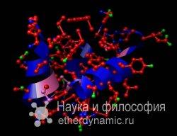 Ученым удалось раскрыть механизм попадания инсулина в кровь